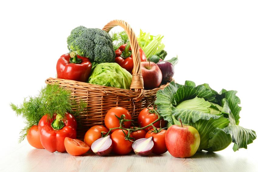 food market provence